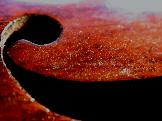 A violin dirtied with rosin
